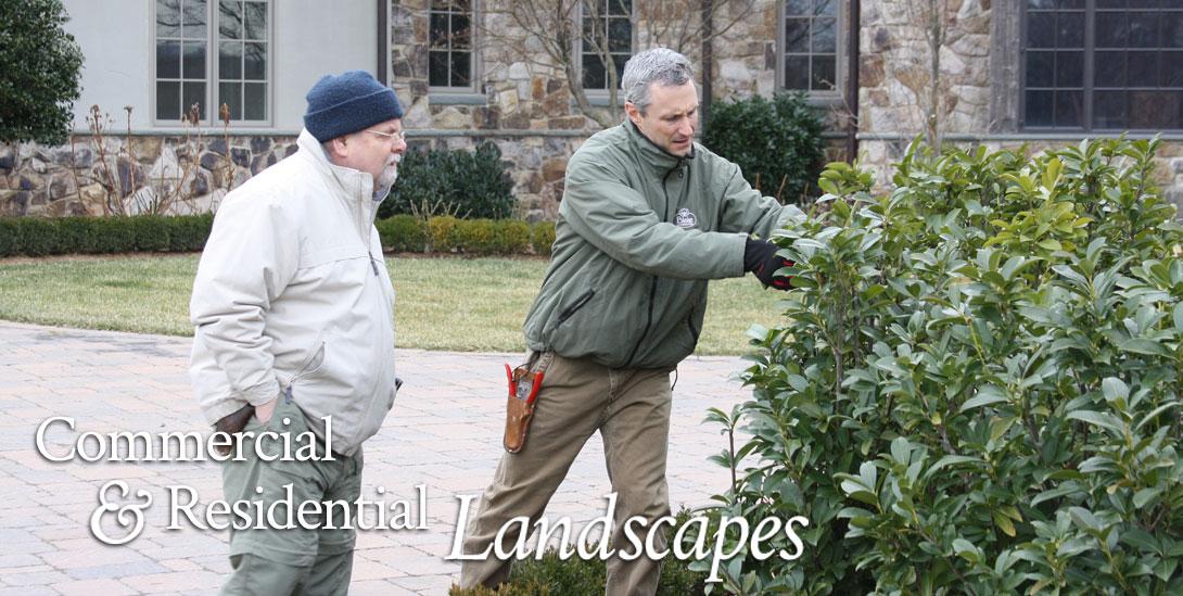 Landscape Architecture and Design