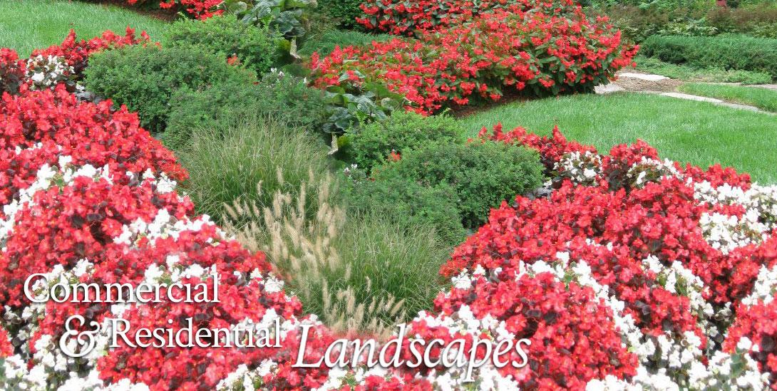 Seasonal Landscape Services